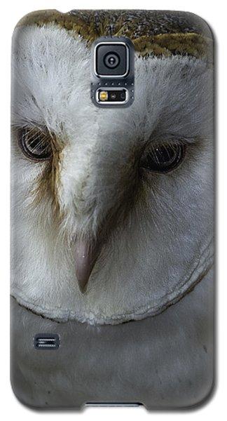 Barn Owl 2014-001 Galaxy S5 Case