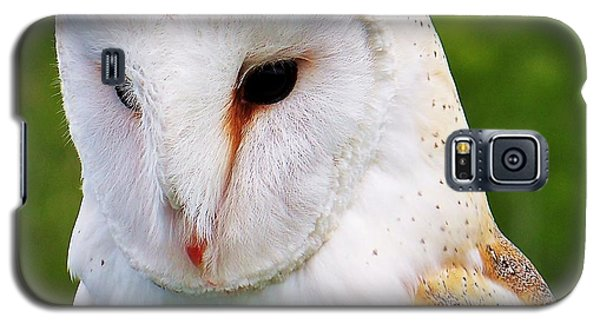Barn Owl... Galaxy S5 Case