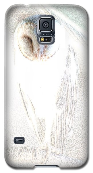 Galaxy S5 Case featuring the photograph Barn Owl by Holly Kempe
