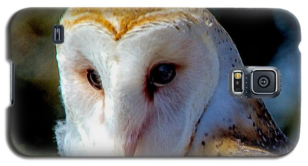 Galaxy S5 Case featuring the photograph Barn Owl Portrait by Constantine Gregory