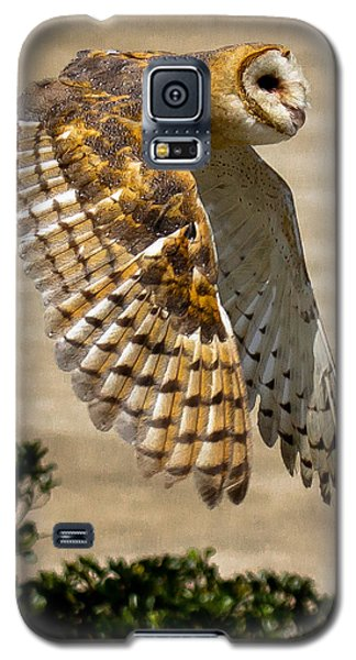 Barn Owl Galaxy S5 Case by Robert L Jackson