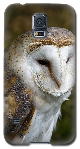 Barn Owl Galaxy S5 Case by Scott Carruthers