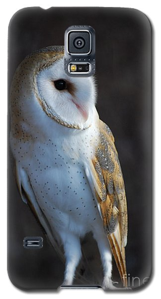 Galaxy S5 Case featuring the photograph Barn Owl by Sharon Elliott