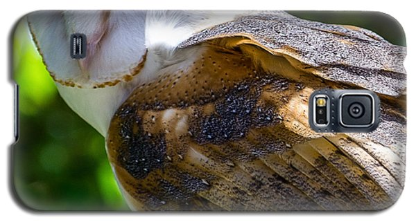 Galaxy S5 Case featuring the photograph Barn Owl by Yeates Photography