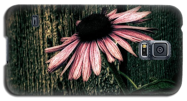 Galaxy S5 Case featuring the photograph Barnyard Coneflower by Marjorie Imbeau