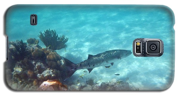 Galaxy S5 Case featuring the photograph Barracuda by Eti Reid