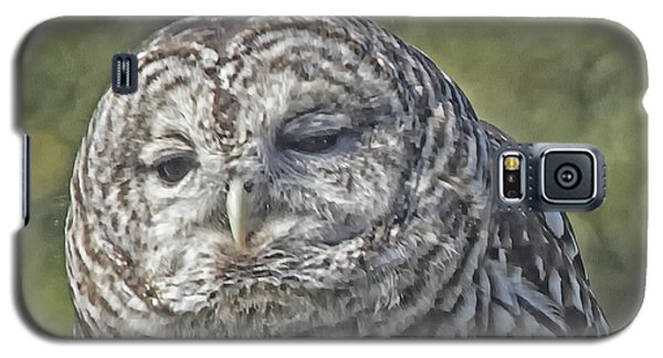 Galaxy S5 Case featuring the photograph Barred Hoot Owl Photo Art by Constantine Gregory