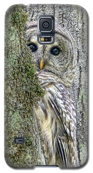 Barred Owl Peek A Boo Galaxy S5 Case