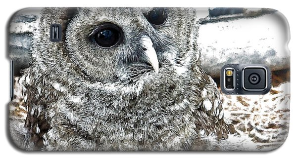 Galaxy S5 Case featuring the photograph Barred Owl Photo Art by Constantine Gregory