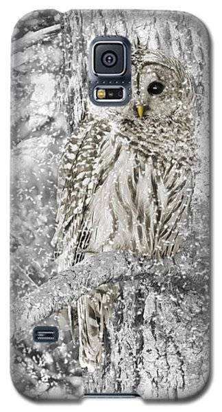 Barred Owl Snowy Day In The Forest Galaxy S5 Case