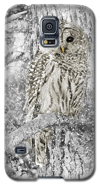 Barred Owl Snowy Day In The Forest Galaxy S5 Case by Jennie Marie Schell