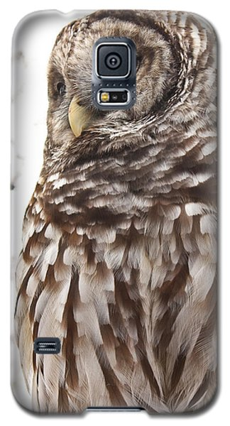 Galaxy S5 Case featuring the photograph Barred Owl by Tammy Schneider