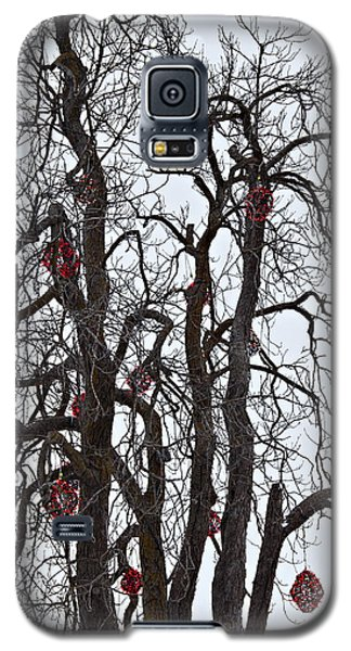 Barren Beauty Galaxy S5 Case