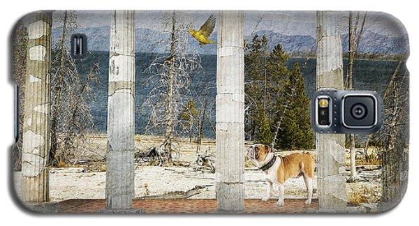 Galaxy S5 Case featuring the digital art Barren Shoreline by Liane Wright