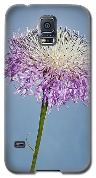 Basket-flower Blocking The Sun Galaxy S5 Case