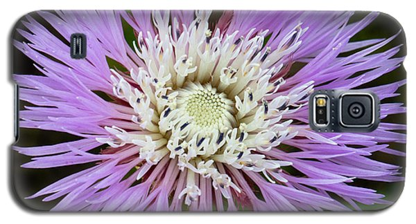 Basket-flower Opening Galaxy S5 Case