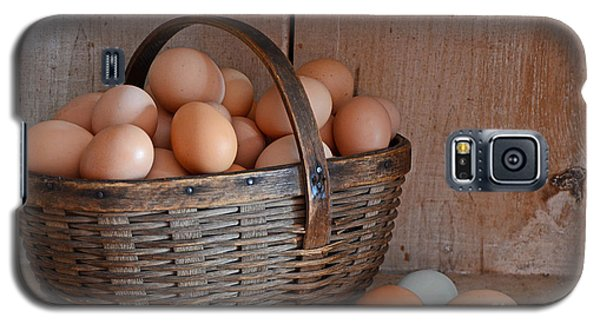 Basket Full Of Eggs Galaxy S5 Case by Mary Carol Story