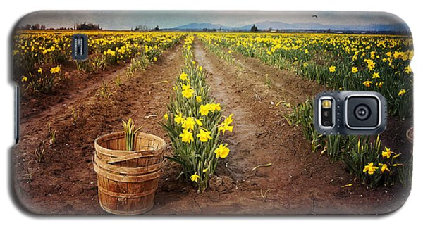 Galaxy S5 Case featuring the photograph basket with Daffodils by Sylvia Cook