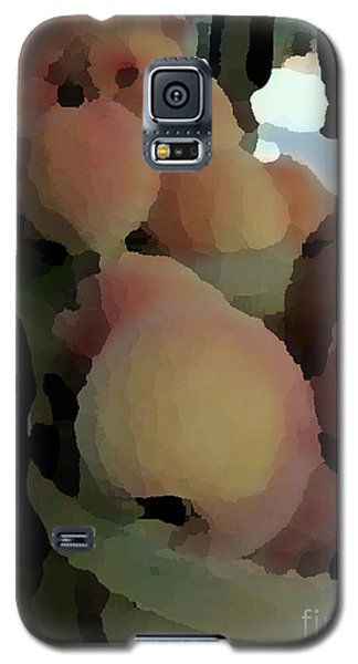 Baskets Of Peaches Galaxy S5 Case