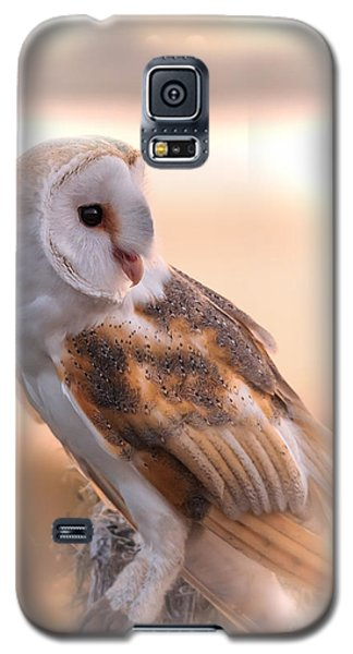 Basking In The Morning Sun Galaxy S5 Case by Mary Lou Chmura