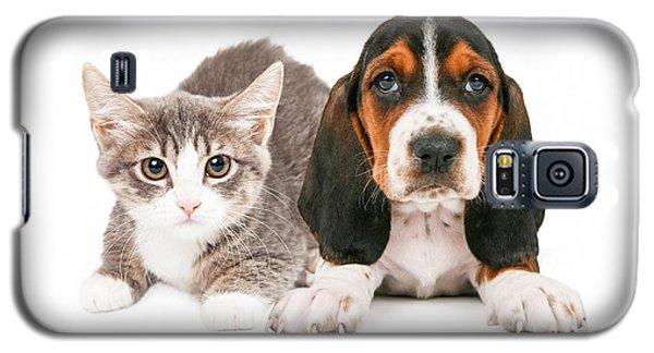 Basset Hound Puppy And Kitten Galaxy S5 Case