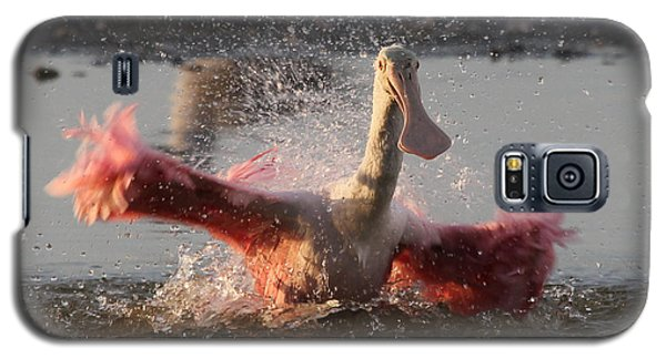 Bath Time - Roseate Spoonbill Galaxy S5 Case