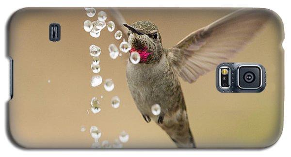 Bath Time For Anna's Hummingbird Galaxy S5 Case by Doug Herr