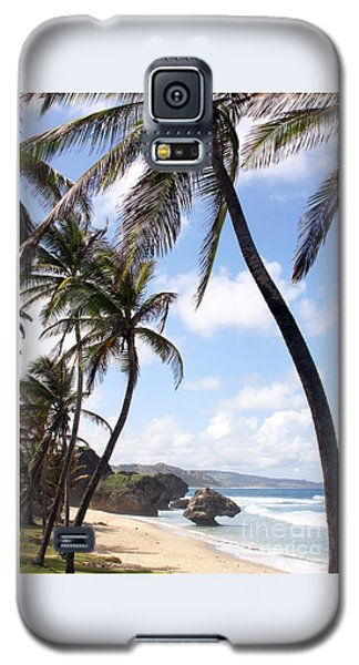 Bathsheba No17 Galaxy S5 Case