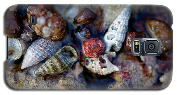 Galaxy S5 Case featuring the photograph Bauxite Shells And Sand. by Carole Hinding