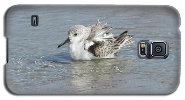 Beach Bird Bath 4 Galaxy S5 Case