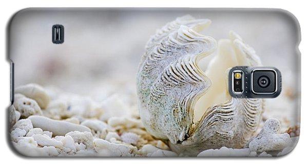 Beach Galaxy S5 Case - Beach Clam by Sean Davey
