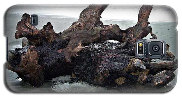 Beach Driftwood In Color Galaxy S5 Case
