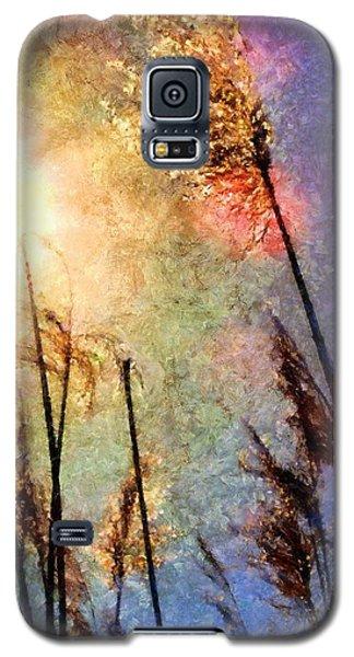 Beach Grass Afternoon Galaxy S5 Case