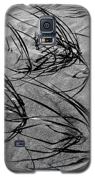 Beach Grass Black And White Galaxy S5 Case