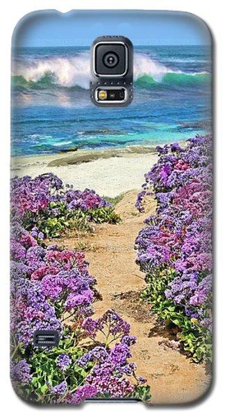 Beach Pathway Galaxy S5 Case