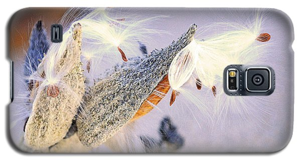 Beach Pod Galaxy S5 Case