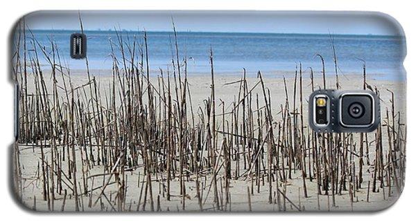 Beach Scene Galaxy S5 Case