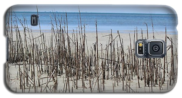 Beach Scene Galaxy S5 Case