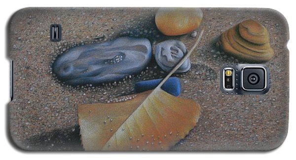 Galaxy S5 Case featuring the painting Beach Still Life IIi by Pamela Clements