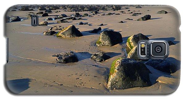 Beach Stones I Galaxy S5 Case by Cassandra Buckley
