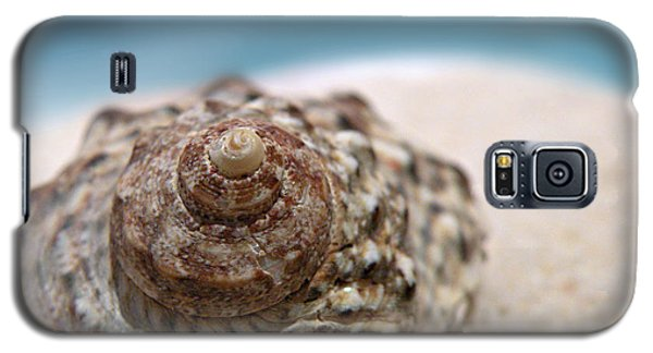 Beach Treasure Galaxy S5 Case by Micki Findlay