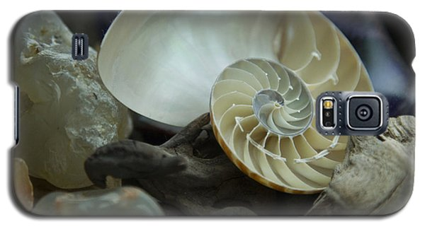 Galaxy S5 Case featuring the photograph Beach Treasures 2 by Jeanette French