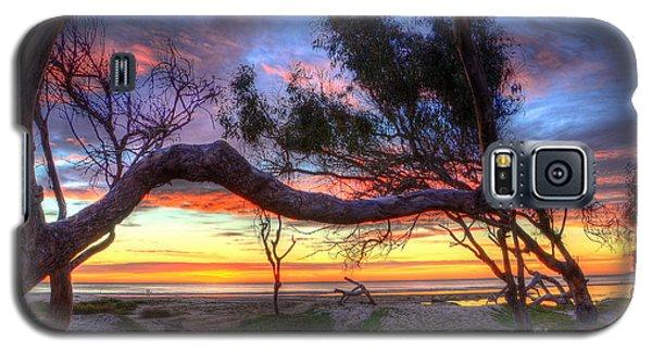 Beach Tree Sunset View Galaxy S5 Case