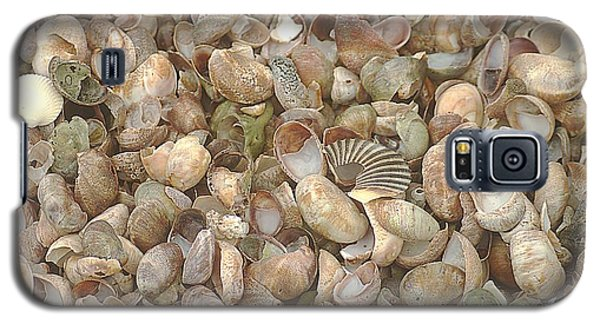 Galaxy S5 Case featuring the photograph Beached Shells by Suzanne Powers