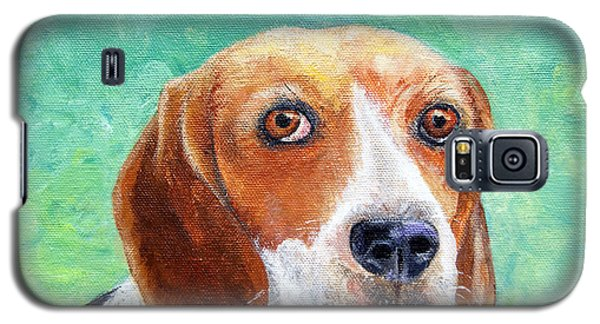 Beagles Rock Galaxy S5 Case by Terry Taylor