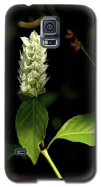 Beam Of Light Galaxy S5 Case