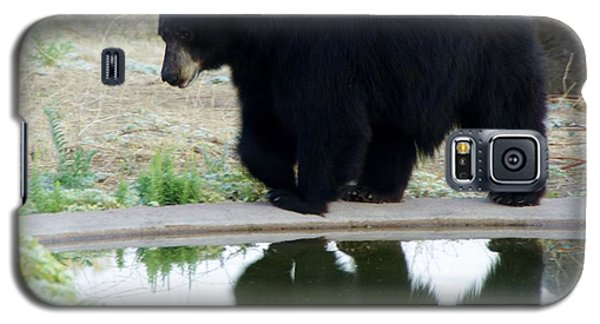 Bear 2 Galaxy S5 Case