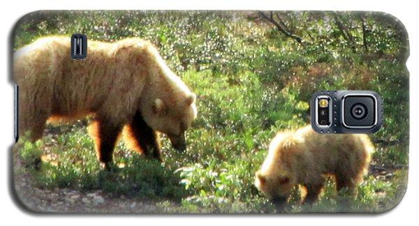 Bear And Cub At Denali Galaxy S5 Case
