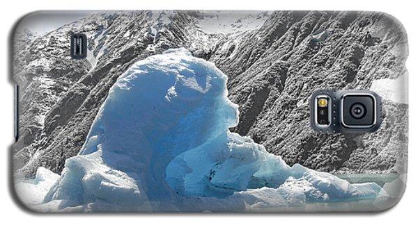Bear Berg Galaxy S5 Case