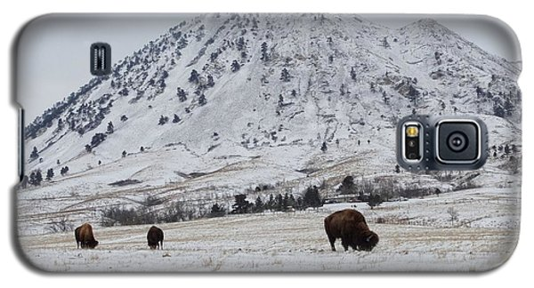 Bear Butte Buffalo Galaxy S5 Case
